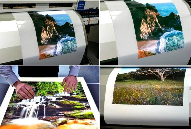 backlit paper for window display